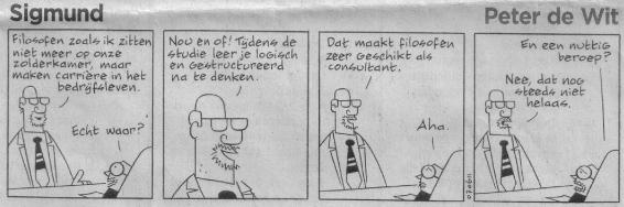 Filosoof als Consultant